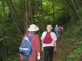 パノラマ台への山道